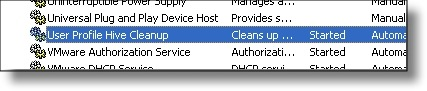 User Profile Hive Cleanup Service